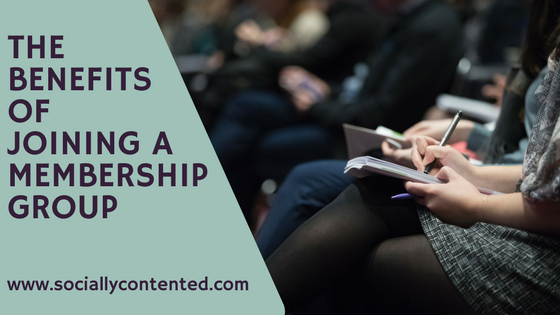 Why You Should Join a Professional Membership Group